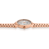 Luxury rose gold dial rose presidential link watch